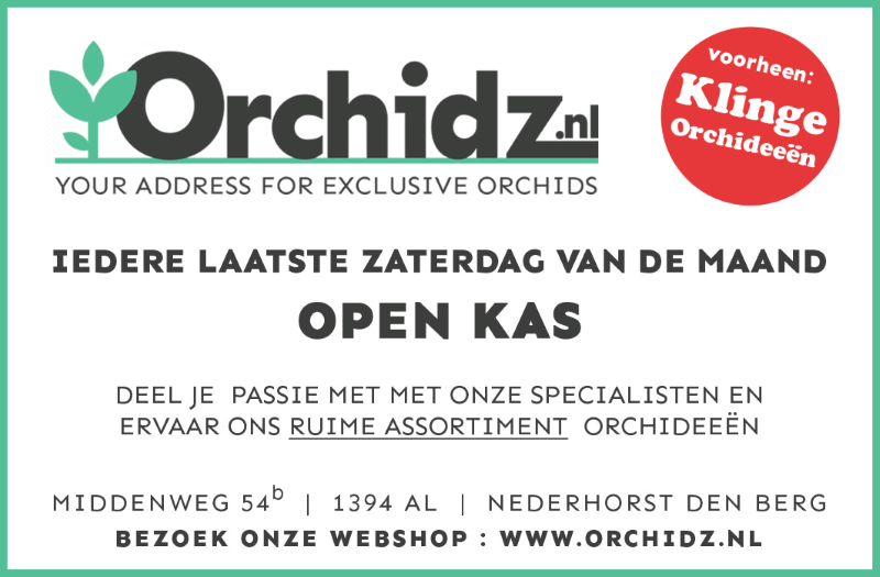 Advertentie Orchidz Klinge